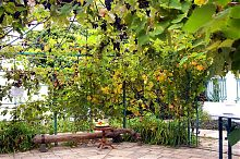 Садик комплекса караимских кенас в Евпатории