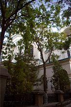 Східний фасад євпаторійського Миколаївського собору