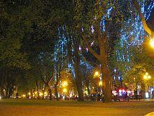 Львовский проспект Свободы