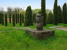 Кипарисовий куточок Олеського парку