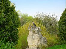 Один из уголков Олесского парка