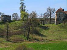 Східна оборонна вежа та Свіржський замок