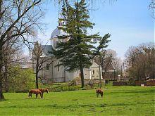 Свірзький Успенський костел
