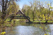 """Мостик над журчащим потоком в тернопольском парке """"Топильче"""""""