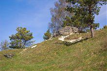 Вапнякові обнаження на кременецькій Замковій горі