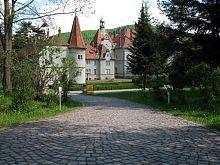 Аллея Шенборнского парка в Чинадиево