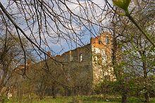 Північно-західний фасад Золотопотоцького замку