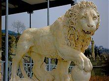Несплячий лев левової терасі Воронцовського парку в Алупці
