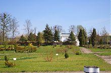 Ландшафтний парк перед центральним входом Білокриницького дендропарку