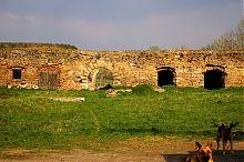 Замкове подвір'я фортеці в Микулинцях