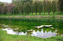 Південний ставок парку в Раю