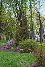 Видовая поляна замкового парка в Збараже