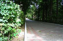 Центральная аллея Немировского парка