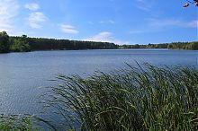 Річка Устя. Ставок спиртзаводу. Немирів. Вінницька область