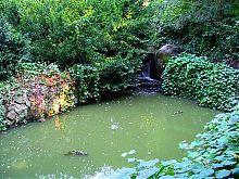 Ахеронтийское озеро в уманской Софиевке