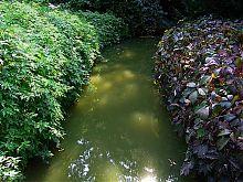 Река Стикс в уманской Софиевке