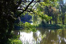 Гребля між двома ставками в андрушівському парку Терещенко