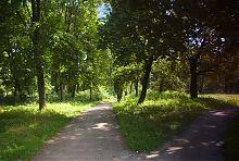 Алеї Терещенківського парку в Червоному