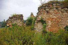 Руины Новомалинской крепости