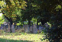 Східна частина Здолбунівського старого єврейського кладовища