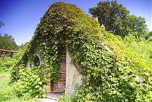 Теплиці Шарівського маєтку