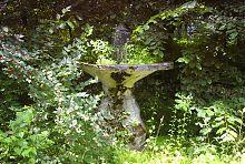 Чаша фонтана в Натальевском парке