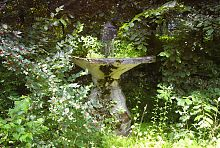 Чаша фонтану в Натальївську парку