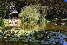 Остров любви в акклиматизационном саде Каразиных