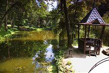 Большой пруд Краснокутского дендропарка