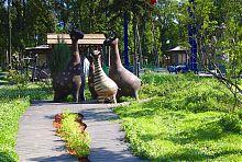 Березова галявина в харківському парку ім. Максима Горького