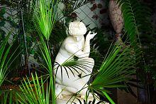 Купающаяся Афродита. Зимний сад Алупкинского Воронцовского дворца