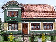 Сучасне село. Музей під відкритим небом Пирогово Києва