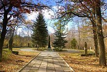 Памятник В.Е. Граффу в Великоанадольском парке