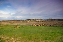 Історико-археологічний заповідник Кам'яна Могила