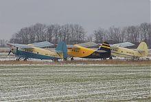 Самолеты Ан-2 на аэродроме в Валерьяновке