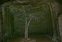 Соляна копія пальми Мерцалова в соледарській шахті