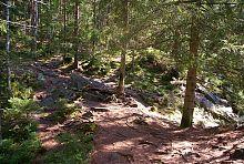 Тропа Довбуша на Чорногорском хребте Карпат