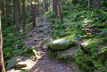 Довбушевская тропа к скалам Черной горы Карпат