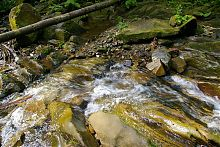 Река Жонка у водопада Девичьи слезы в Яремче