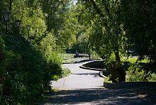 Замковий дендропарк в Радомишлі