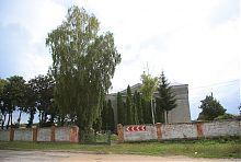 Костел Пресвятої Трійці в Волочиську