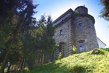 Північно-західна кутова вежа паркового фасаду палацу
