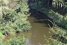 Південний Буг поряд з мостом в Хмільнику