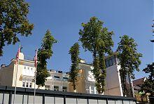 Комплекс колишньої садиби Вілінського в Вінниці