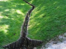 Струмок у діброві Звіринець (Софіївка. Умань)
