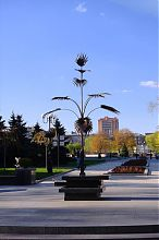 Пальма Мерцалова донецкого бул. Пушкина