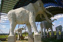 Скульптури мамонтів Старунського озокеритного поховання