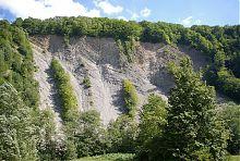 Відслоєння шарових гірських порід в Яремче