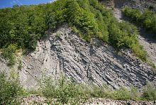 Південний схил скелі Слон в Яремче