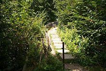 Сходи до пішохідного вантового мосту Яремче